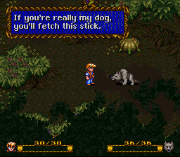 If you're really my dog, you'll fetch this stick.