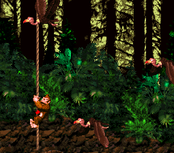 Donkey Kong on a rope dodging some Neckys.