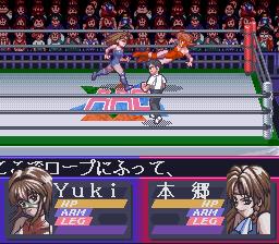 Bishoujo Wrestler Retsuden: Blizzard Yuki Rannyuu!!