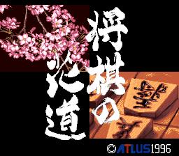 Pro Kishi Jinsei Simulation: Shougi no Hanamichi