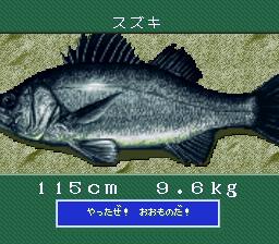 Umi Tsuri Meijin Suzuki Hen