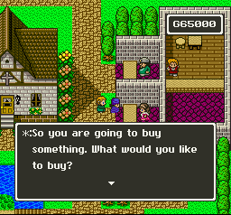 Dragon Quest V English